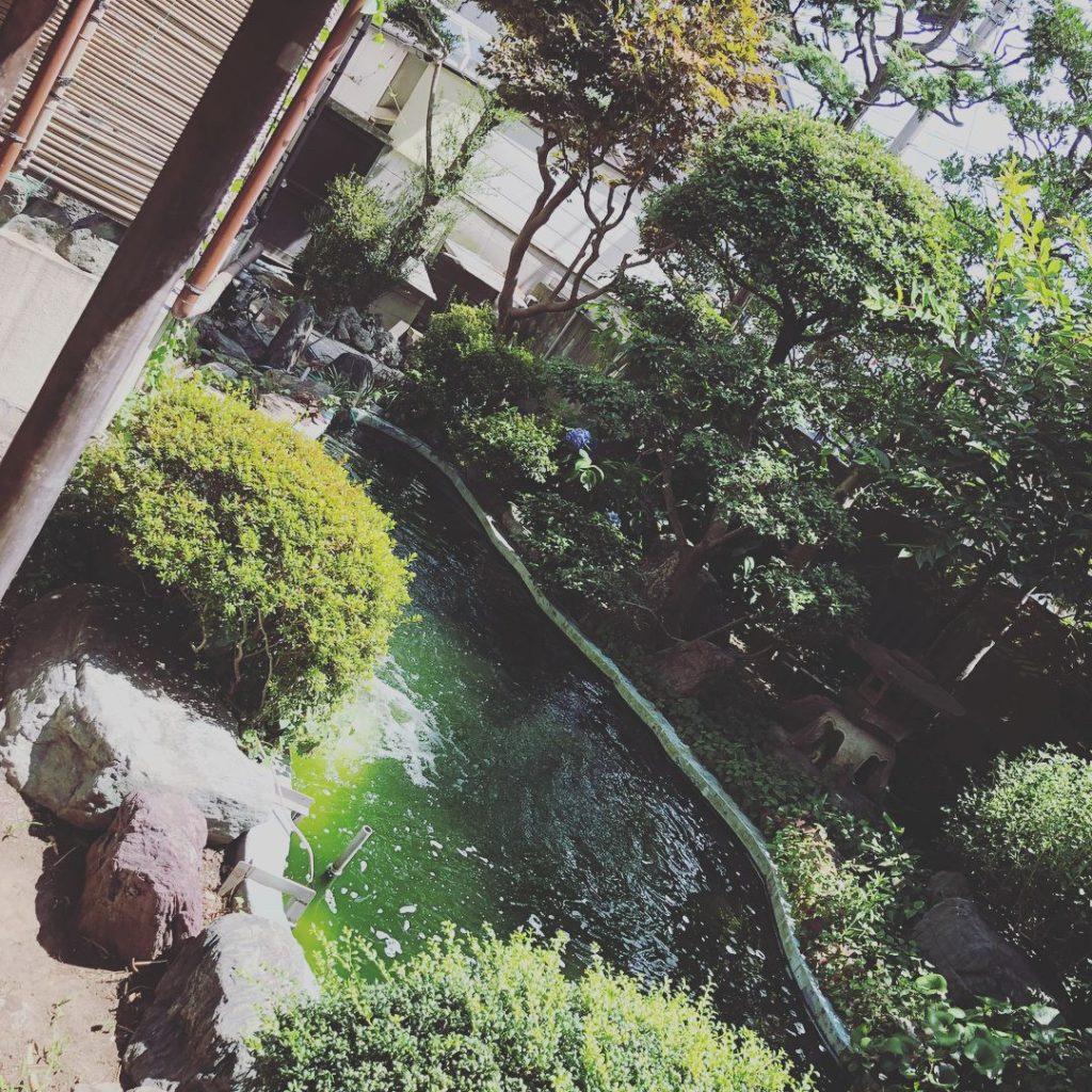 中庭 - 川崎 銭湯